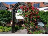 Ogródek letni restauracji Tarouca